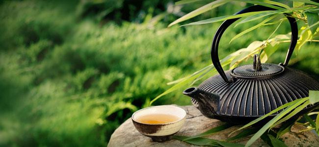 Grüner Tee Kanne Zubereitung