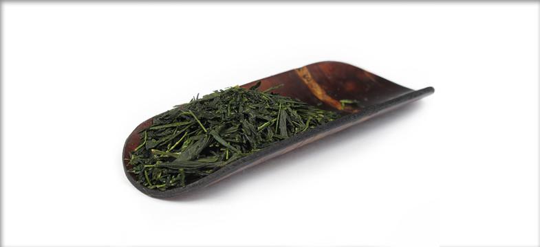 Grüner Tee: Dosierung