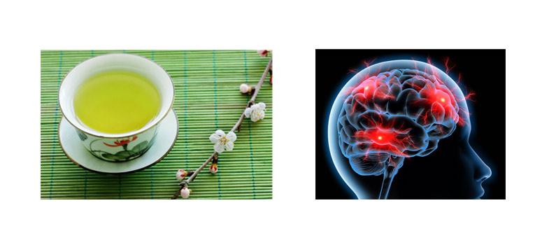Grüner Tee Nebenwirkungen