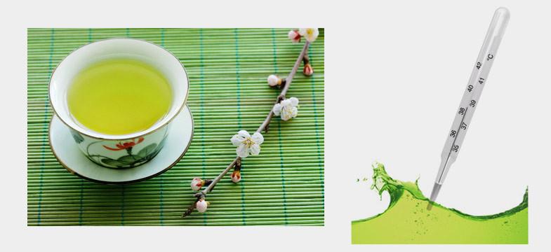 Grüner Tee Temperatur