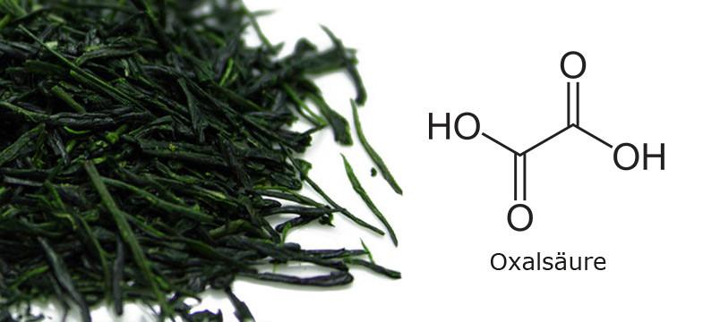 Oxalsäure im japanischen grünen Tee