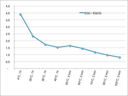 Verhältnis EGC zu EGCG im Grünteeaufguss je nach Zubereitung