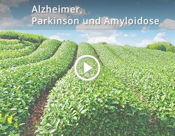 Alzheimer, Parkinson und Amyloidose