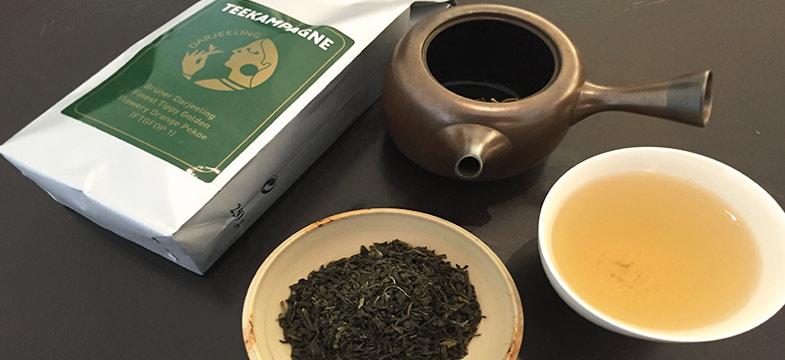 Grüner Darjeeling, Teekampagne im Vergleich