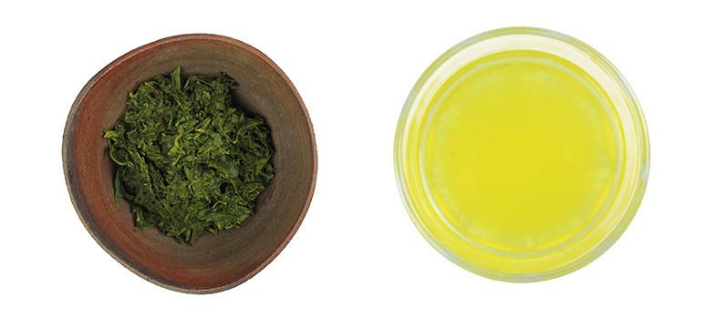 Aufgüsse beim grünen Tee