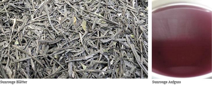 Sunrouge Teeblätter und Aufguss
