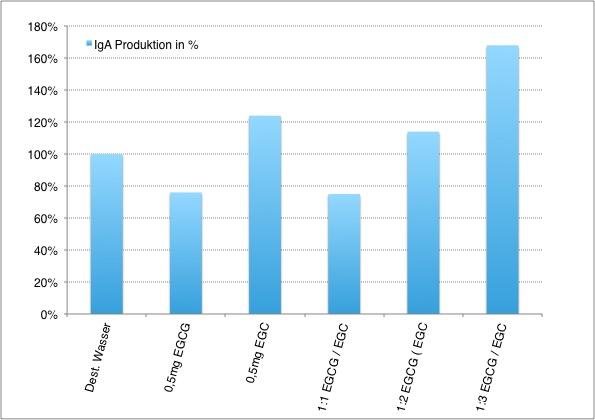 IgA-Produktion in % je nach Gabe von EGC und EGCG